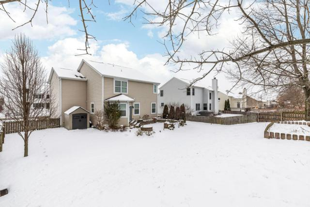 170 Longleaf Street, Pickerington, OH 43147 (MLS #219001537) :: Brenner Property Group | KW Capital Partners