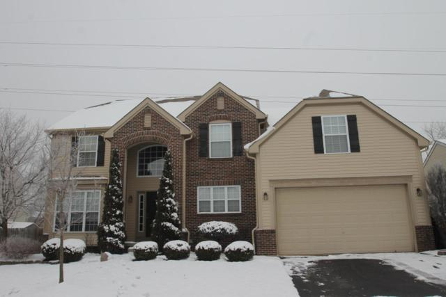 8252 Bellow Park Drive, Reynoldsburg, OH 43068 (MLS #219001556) :: The Raines Group