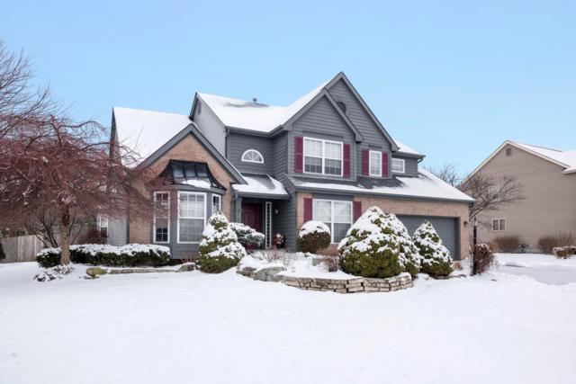 13725 Mottlestone Drive, Pickerington, OH 43147 (MLS #219001565) :: Brenner Property Group | KW Capital Partners
