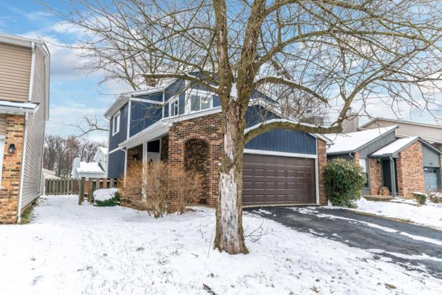 872 Fortunegate Drive, Westerville, OH 43081 (MLS #219001607) :: Brenner Property Group | KW Capital Partners