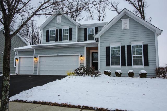 329 Seatrain Drive, Delaware, OH 43015 (MLS #219001660) :: Shannon Grimm & Partners