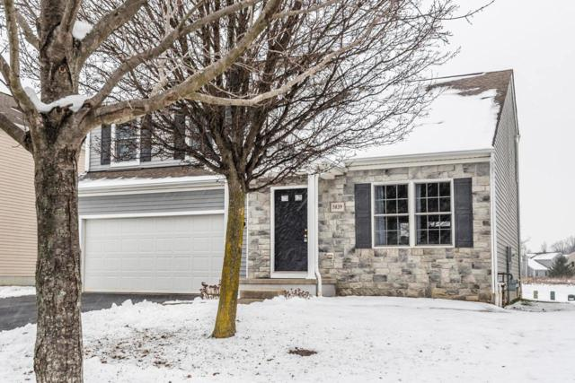5839 Genoa Farms Boulevard, Westerville, OH 43082 (MLS #219001717) :: Brenner Property Group | KW Capital Partners