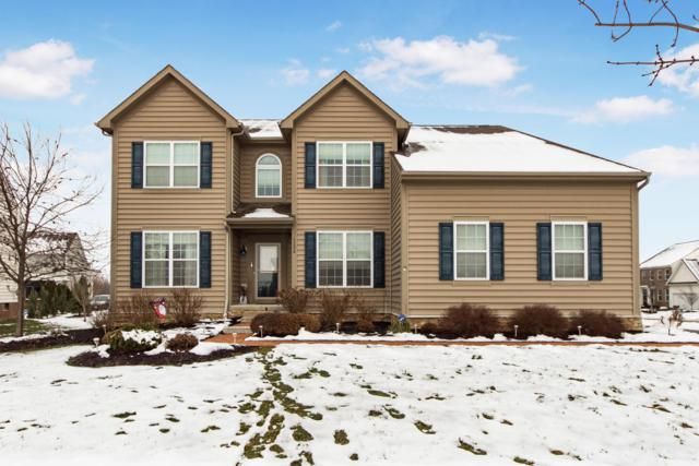 1356 Scotsman Drive, Grove City, OH 43123 (MLS #219001800) :: RE/MAX ONE