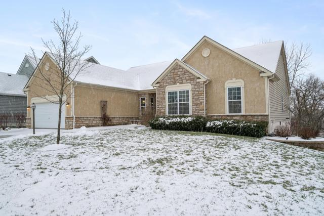 6419 Scioto Chase Boulevard, Powell, OH 43065 (MLS #219002043) :: Brenner Property Group   KW Capital Partners