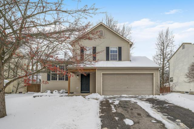561 Thistle Drive, Delaware, OH 43015 (MLS #219002109) :: RE/MAX ONE