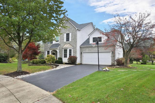 2423 Steward Court, Galena, OH 43021 (MLS #219002116) :: RE/MAX ONE