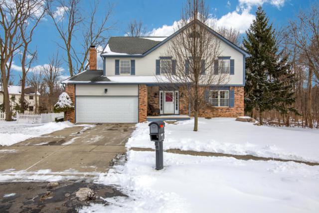 1568 Deer Crossing Lane, Worthington, OH 43085 (MLS #219002134) :: Brenner Property Group | KW Capital Partners