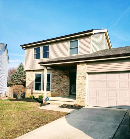 800 Lancia Lane, Galloway, OH 43119 (MLS #219002143) :: Brenner Property Group | KW Capital Partners