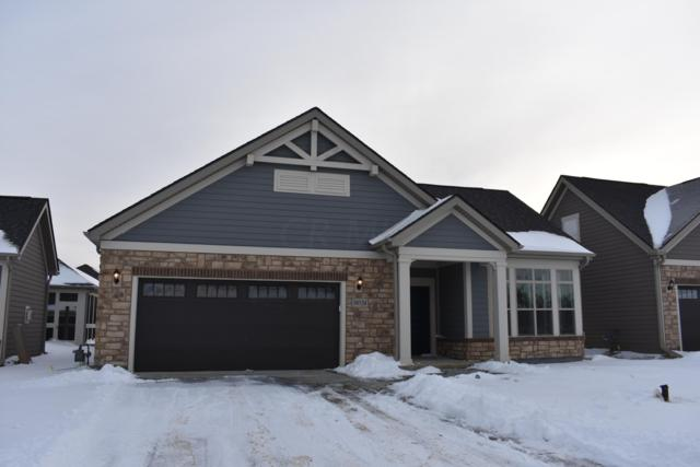 10524 Elderberry Drive, Plain City, OH 43064 (MLS #219002166) :: Shannon Grimm & Partners