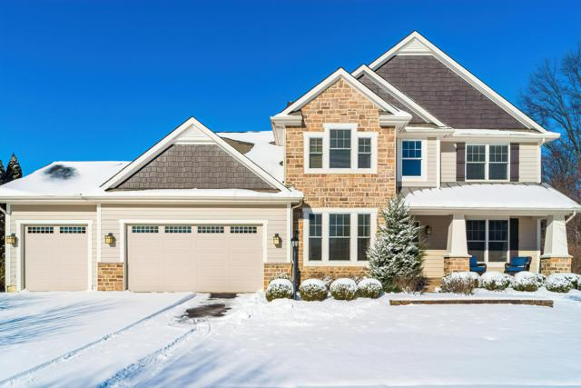 5859 Braymoore Drive, Galena, OH 43021 (MLS #219002192) :: Shannon Grimm & Partners