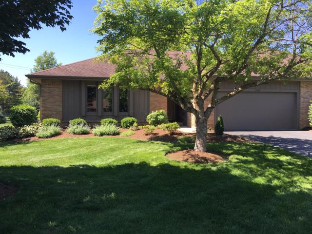 5307 Laidon Court, Dublin, OH 43017 (MLS #219002393) :: Brenner Property Group | KW Capital Partners