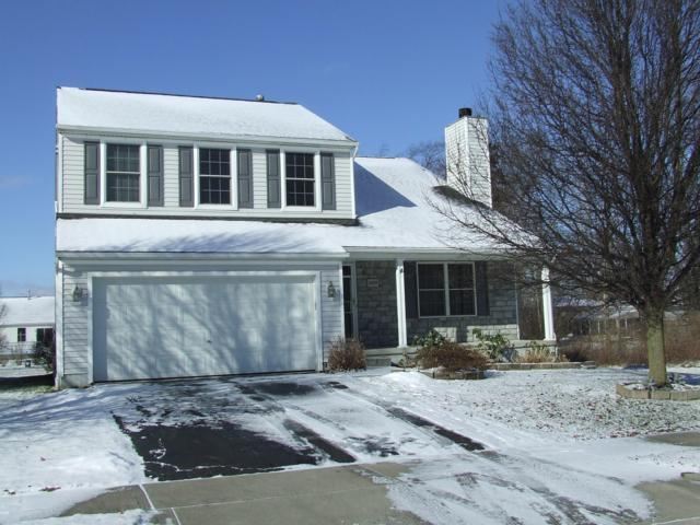 3009 Wyndburgh Drive, Columbus, OH 43219 (MLS #219002453) :: Brenner Property Group | KW Capital Partners