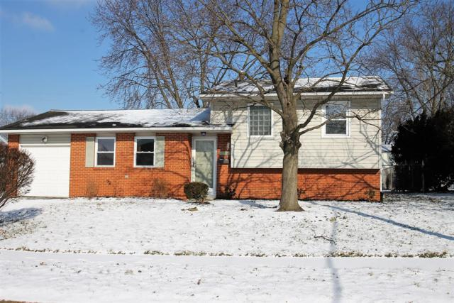 3588 Manila Drive, Westerville, OH 43081 (MLS #219002638) :: CARLETON REALTY