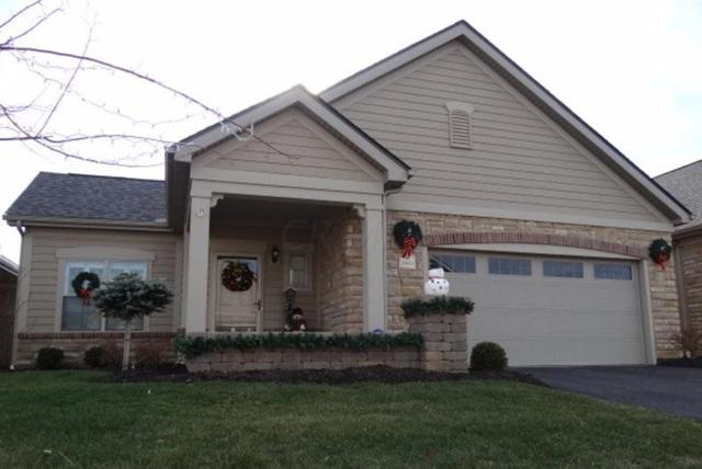 3901 Foresta Grand Drive, Powell, OH 43065 (MLS #219002693) :: CARLETON REALTY