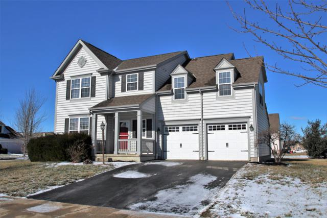 4194 Freesia Drive, Powell, OH 43065 (MLS #219003168) :: Brenner Property Group   KW Capital Partners