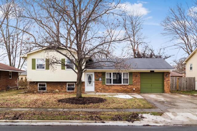 471 Foxwood Drive, Columbus, OH 43230 (MLS #219003287) :: Brenner Property Group   KW Capital Partners