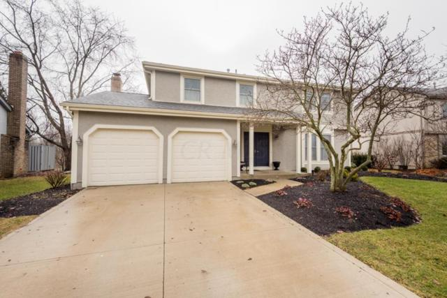 6813 Fallen Timbers Drive, Dublin, OH 43017 (MLS #219003430) :: RE/MAX ONE