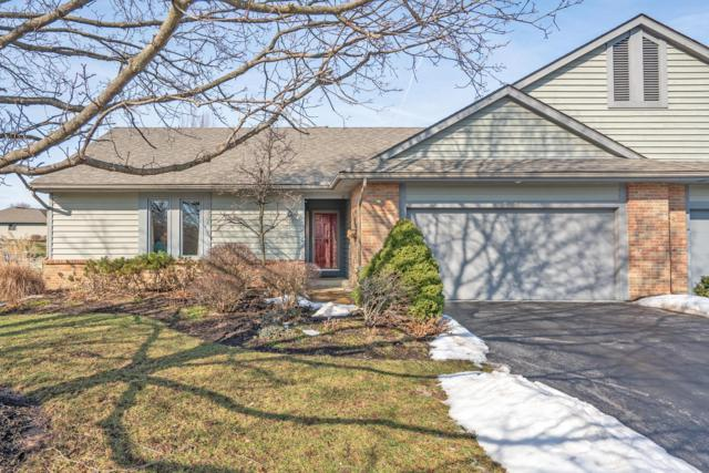 9159 Muirkirk Drive, Dublin, OH 43017 (MLS #219003447) :: Brenner Property Group | KW Capital Partners