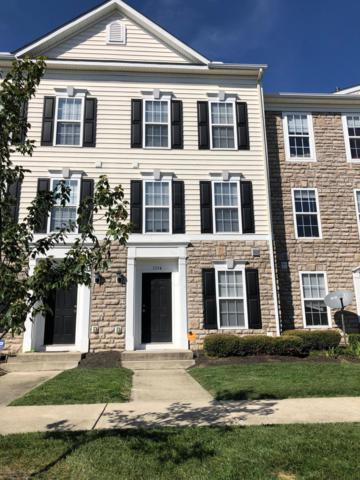 5554 Middle Falls Street 3-5554, Dublin, OH 43016 (MLS #219003595) :: RE/MAX ONE
