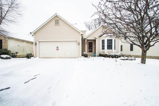 3480 Brook Spring Drive, Grove City, OH 43123 (MLS #219003760) :: Shannon Grimm & Partners