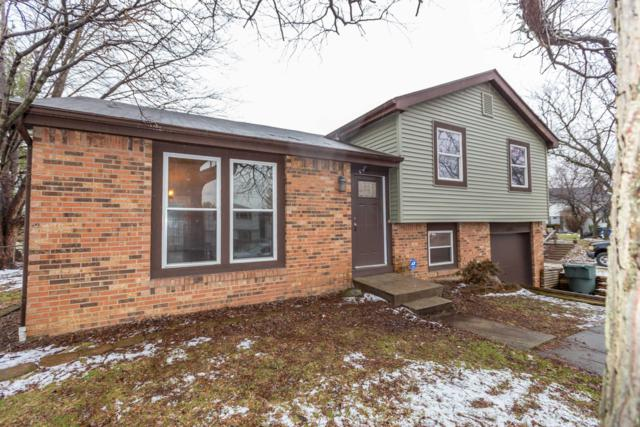 6696 Chatsworth Court, Reynoldsburg, OH 43068 (MLS #219003824) :: The Raines Group