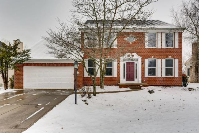 7450 Frasier Road, Westerville, OH 43082 (MLS #219003890) :: RE/MAX ONE