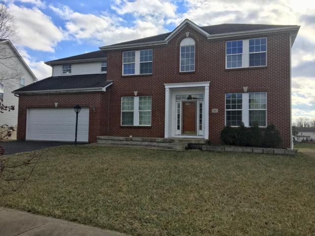 285 Lillian Drive, Pickerington, OH 43147 (MLS #219004014) :: The Clark Group @ ERA Real Solutions Realty