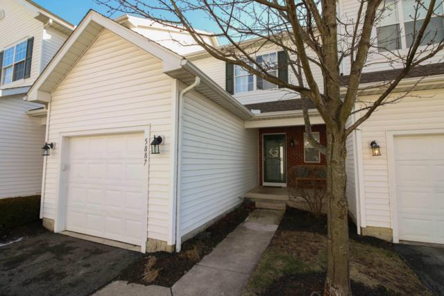 5887 Darby Hill Lane, Hilliard, OH 43026 (MLS #219004048) :: The Clark Group @ ERA Real Solutions Realty