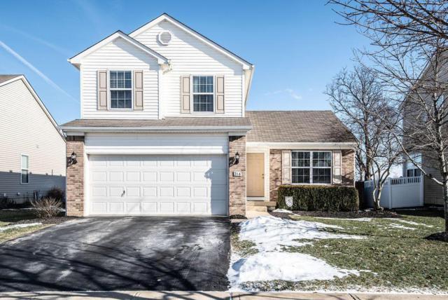 214 Stockard Loop, Delaware, OH 43015 (MLS #219004060) :: Signature Real Estate