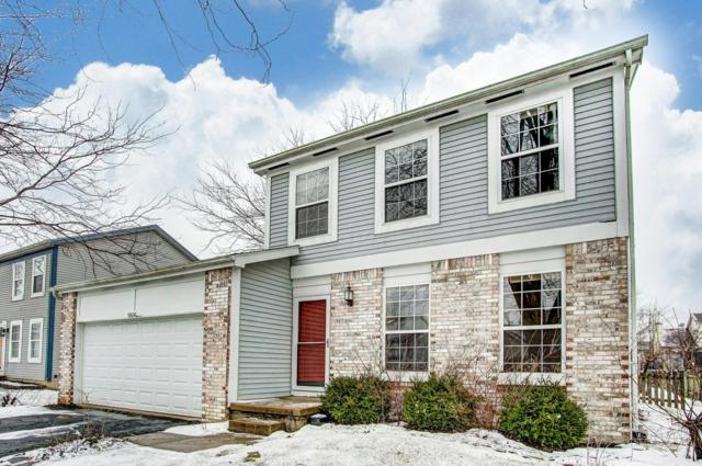 5606 High Arbor Drive, Galloway, OH 43119 (MLS #219004082) :: RE/MAX ONE