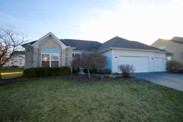 1991 Bald Eagle Drive, Grove City, OH 43123 (MLS #219004119) :: RE/MAX ONE