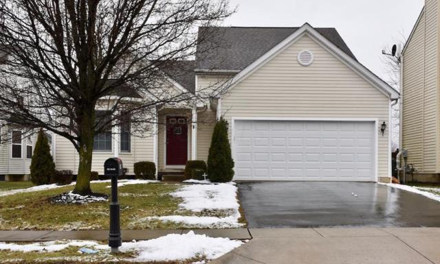 5559 Winchester Meadows Drive, Canal Winchester, OH 43110 (MLS #219004170) :: The Clark Group @ ERA Real Solutions Realty