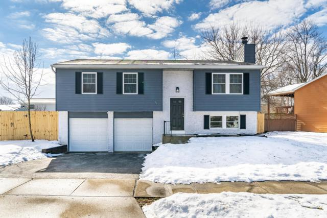 5695 Rachel Court, Hilliard, OH 43026 (MLS #219004188) :: The Clark Group @ ERA Real Solutions Realty