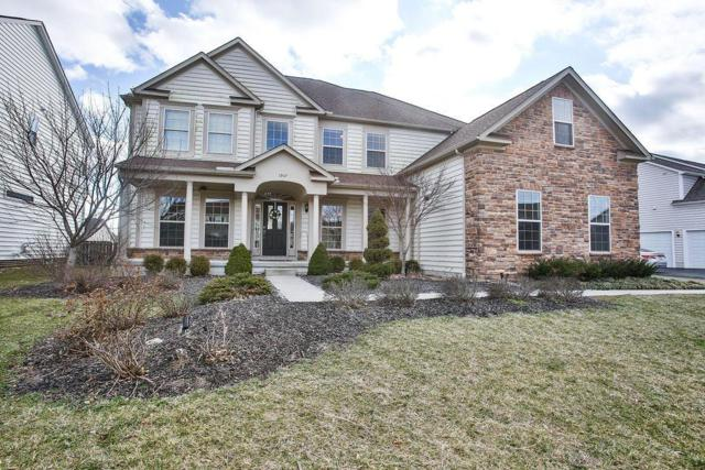 1907 Timber Haven Court, Grove City, OH 43123 (MLS #219004234) :: The Clark Group @ ERA Real Solutions Realty