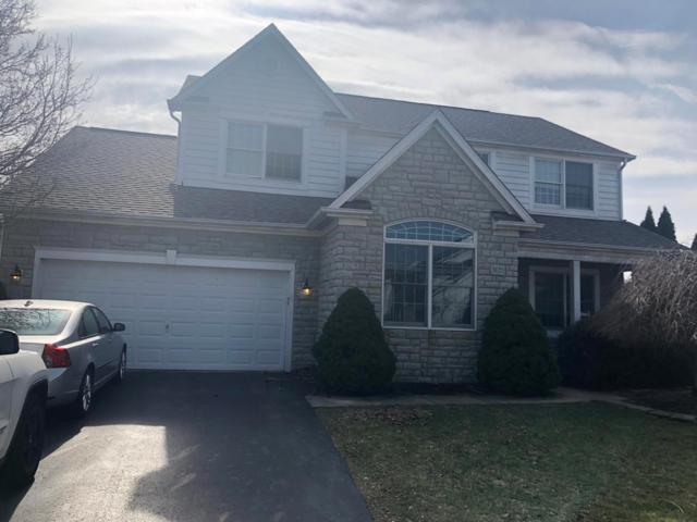 3125 Goodman Meadows Drive, Hilliard, OH 43026 (MLS #219004246) :: Signature Real Estate