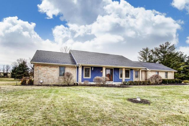 8669 Patterson Road, Hilliard, OH 43026 (MLS #219004283) :: Signature Real Estate