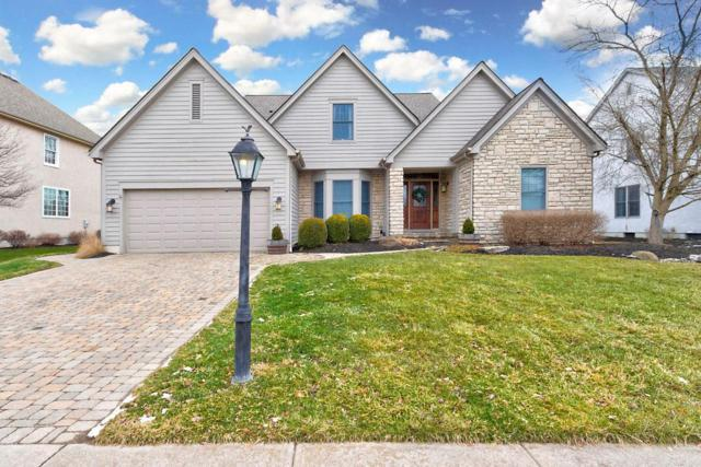 438 Wooten Court S, Powell, OH 43065 (MLS #219004318) :: RE/MAX ONE