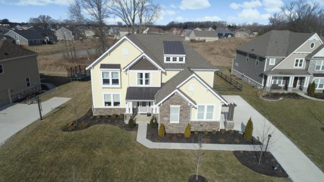 6661 Buttonbush Court, Hilliard, OH 43026 (MLS #219004346) :: Signature Real Estate