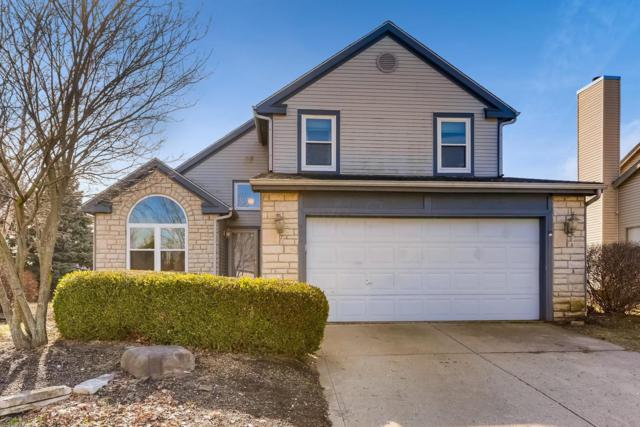 999 Larkfield Drive, Worthington, OH 43085 (MLS #219004364) :: Keller Williams Excel