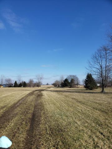 9875 Co Rd 28, Thornville, OH 43076 (MLS #219004391) :: CARLETON REALTY