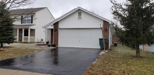 2009 Prominence Drive, Grove City, OH 43123 (MLS #219004505) :: RE/MAX ONE