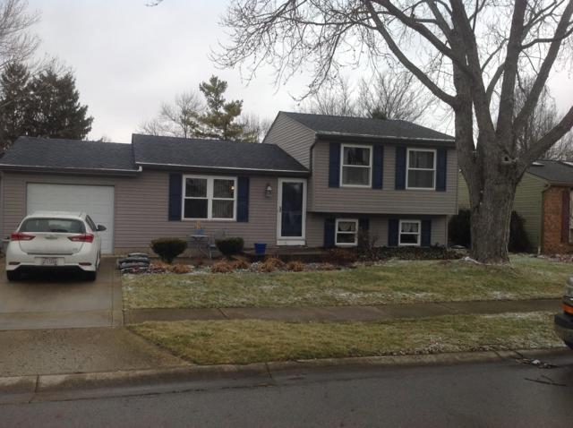1375 Gabon Drive, Galloway, OH 43119 (MLS #219004534) :: Signature Real Estate