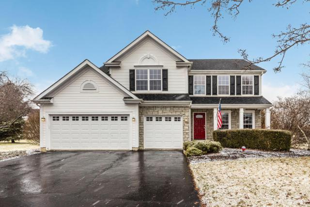6158 Cheyenne Creek Drive, Lewis Center, OH 43035 (MLS #219004561) :: ERA Real Solutions Realty