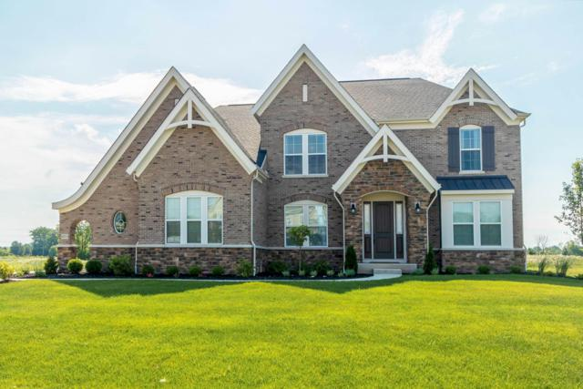 6511 Marshview Drive, Hilliard, OH 43026 (MLS #219004583) :: Signature Real Estate