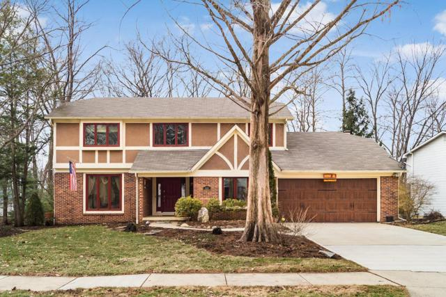 695 Autumn Tree Place, Westerville, OH 43081 (MLS #219004714) :: RE/MAX ONE
