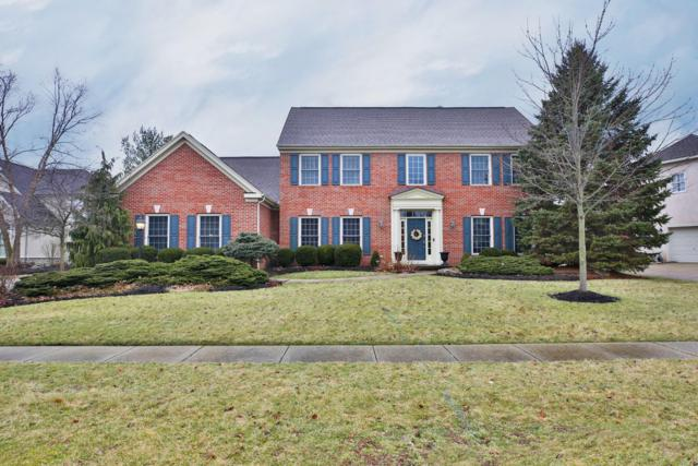 7730 Marsh Blue Court, Westerville, OH 43082 (MLS #219004721) :: Berkshire Hathaway HomeServices Crager Tobin Real Estate