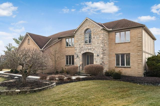 6345 Cragie Hill Court, Dublin, OH 43017 (MLS #219004757) :: RE/MAX ONE