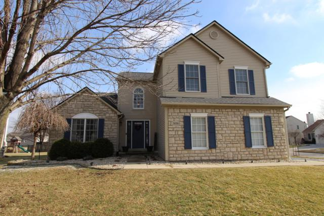 3036 Fawn Crossing Drive, Hilliard, OH 43026 (MLS #219004768) :: Exp Realty