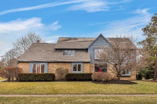 130 Olentangy Ridge Place, Powell, OH 43065 (MLS #219004775) :: Exp Realty