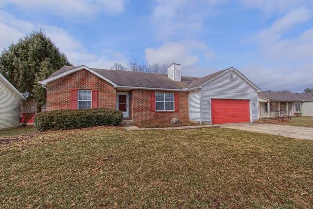 295 Cottontail Drive, Sunbury, OH 43074 (MLS #219004910) :: Exp Realty